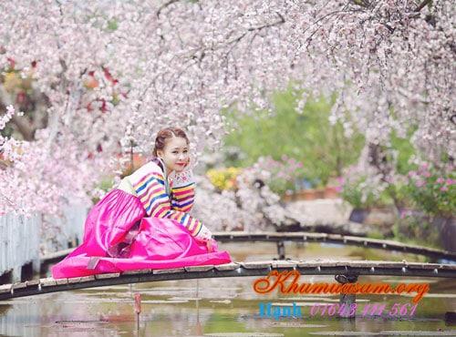 o-dau-ban-hanbok-1